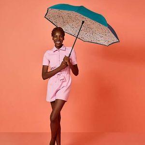 DSW Umbrella